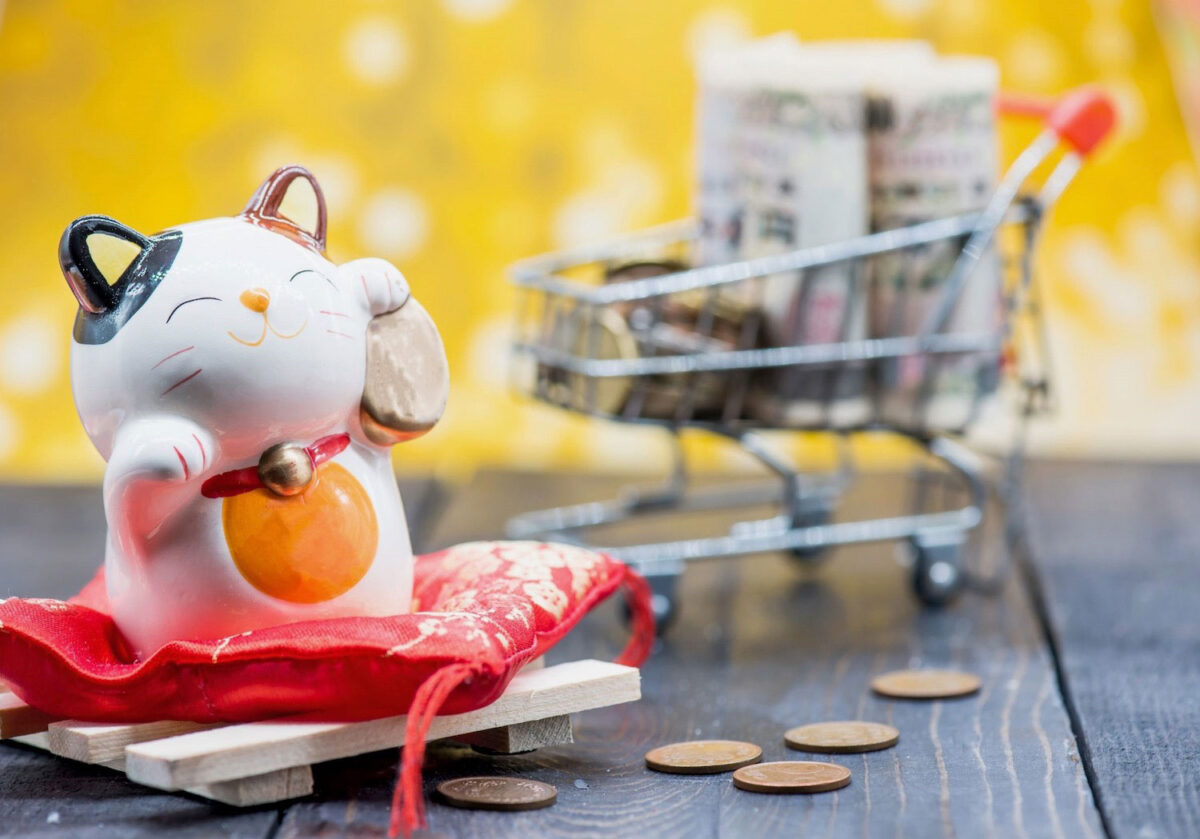 money cat with shopping trolley