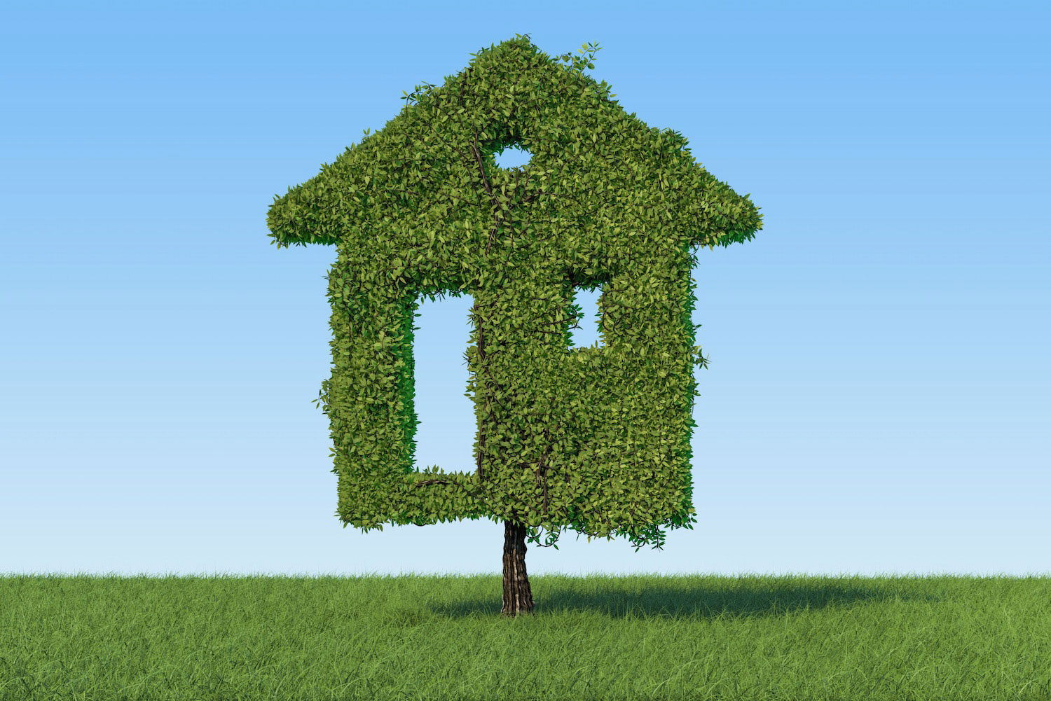 Property Tenure is important for foreign investors to understand